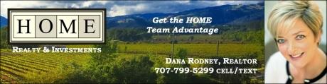 Dana's HOME Banner.jpg